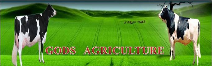 GODS AGRICULTURE2